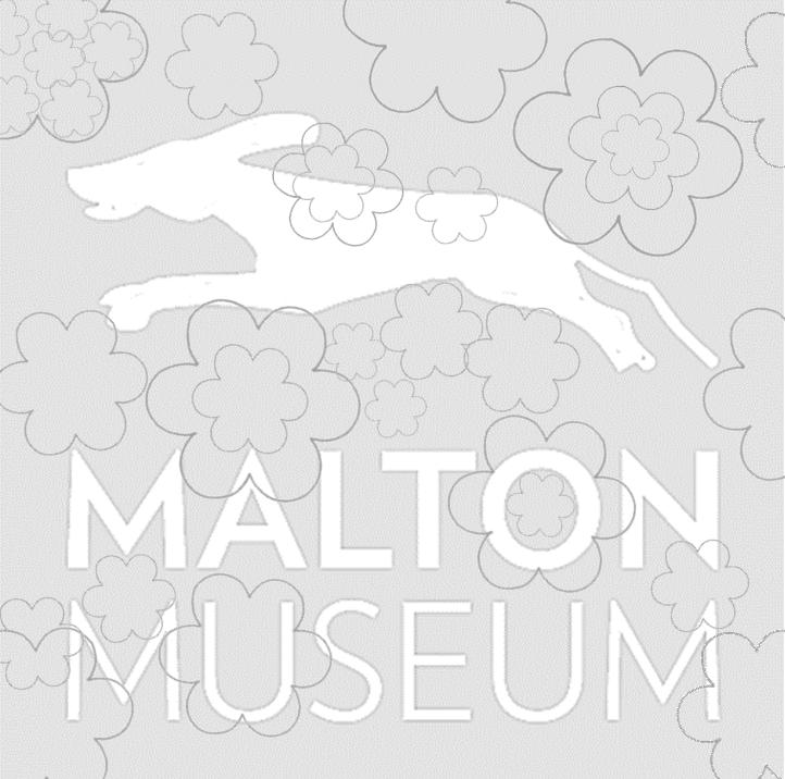 Lucius' Virtual Challenge floral logo design