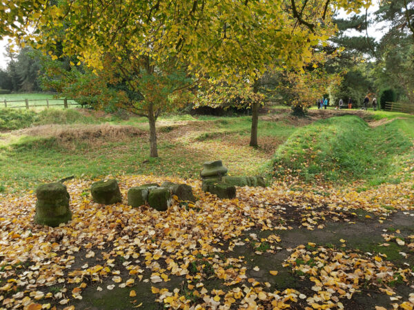 An autumnal scene showing ruined columns, grass banks, and a lawned area with two small trees - fallen leaves are scttered across this scene