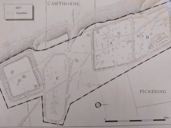 A greyscale illustration of Cawthorn Camps showing a steep bank to the northern edge - there is a perimeter line highlighting the extent of these excavations - the site is in excess of 750m in length from South West to North East - each excavation is similar in size - these are labelled from West to East as follows: site D (square), site C (coffin-shaped), site A (rhombus), and site B (irregular rhombus)