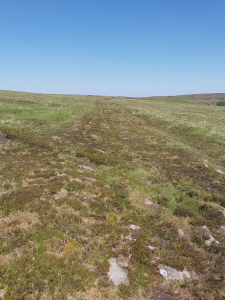 A colour photo showing stoney ground heading away across a stretch of moorland