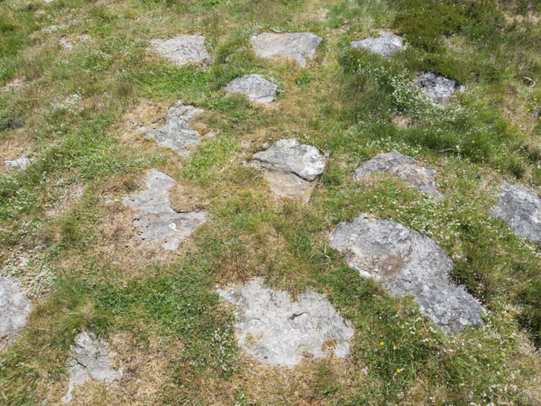 A series of large stones set into dry grassy ground - these resemble stepping stones