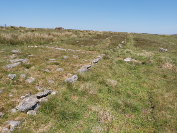 A colour photo showing a line of kerbstones - there is short grass on the right hand side, and much thick tussock grasss on the left - in the distance there is a small single-story building on the horizon, and a fence line leading away to the left