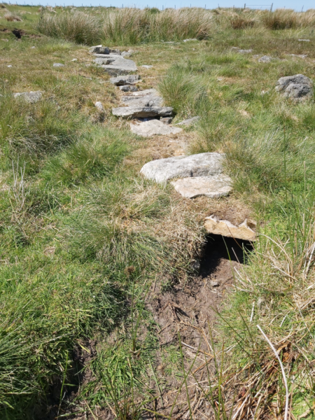 A culvert running along the grassland of Wheeldale Moor, capped with large stones - parts of this culvert have collapsed slightly - at the top there are lots of large clumps of tussock grass