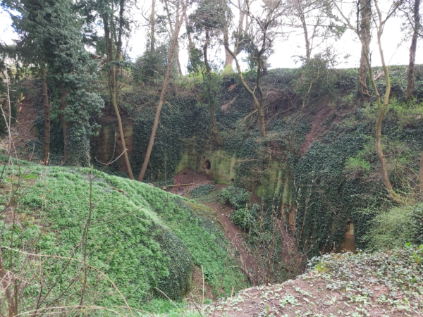 A colour photo showing a disused quarry with mature trees within and around this site - a lot of the ground is overgrown - this quarry has irregular and significantly large embankments within it